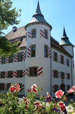 Altes Schloss mit Blumen im Vordergrund